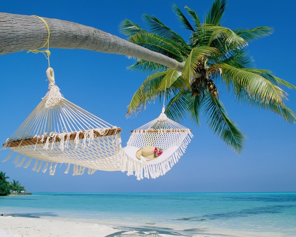 tropical-beach-hammock-wallpapers-picture